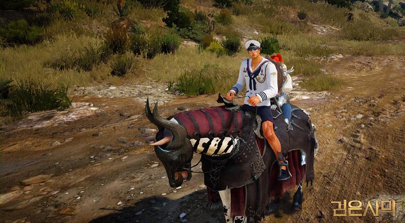 black desert 2 player mount