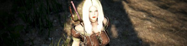 Black Desert Shadow Arena closing