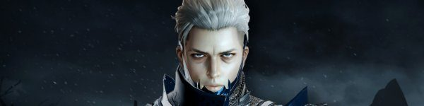 Vindictus deadly assassin Grimden