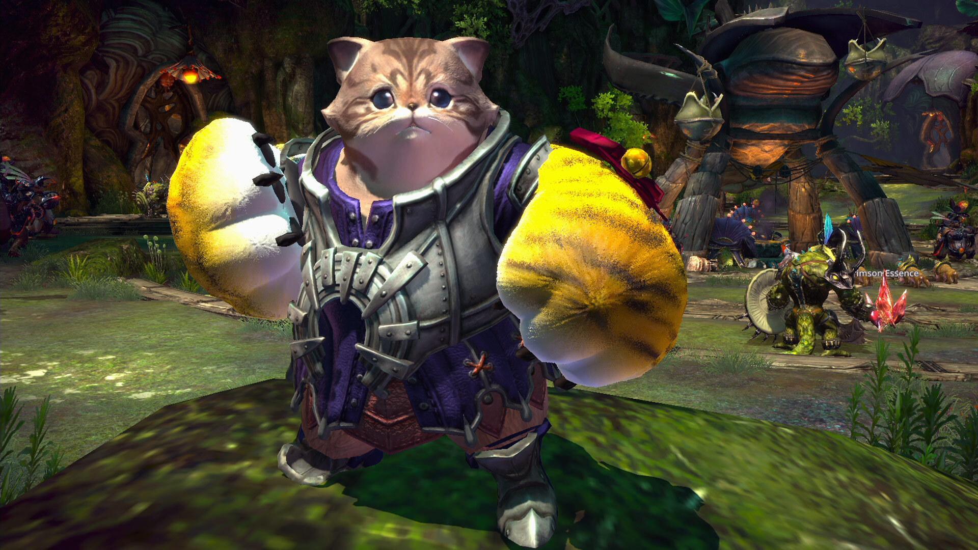 TERA Skywatch Call to Arms cat