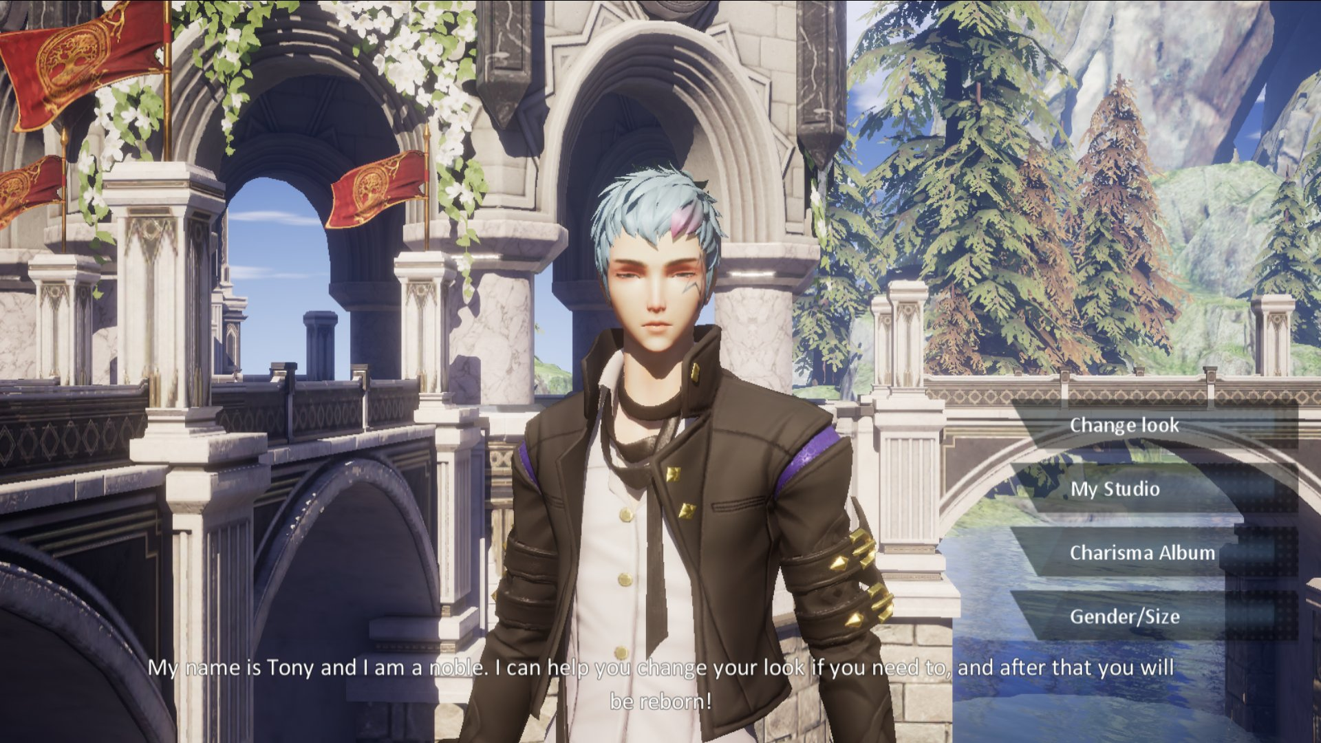 Dragon Raja Character Appearance