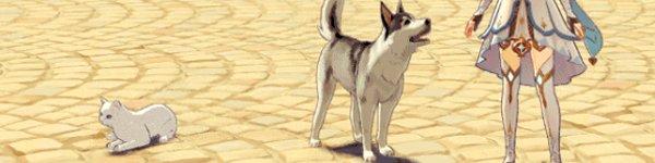 pet the dog Genshin Impact