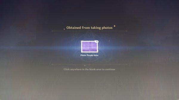 Kurious Kamera Purple Aster