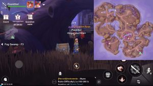 Treasure Chest guide Fog Swamp F3 3